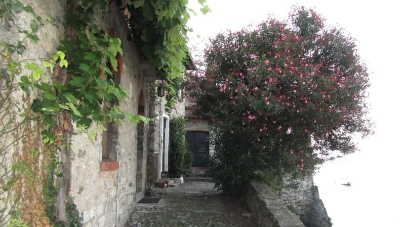 026_sulle_orme_del_viandante_2011