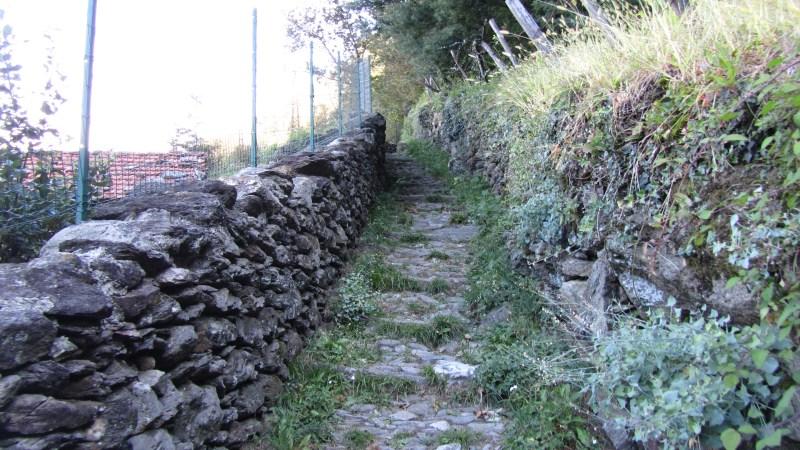 095_sulle_orme_del_viandante_2011