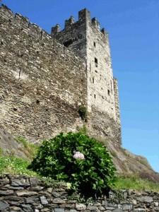 Castello di Corenno Plinio la torre