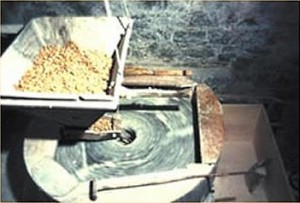 macinatura castagne
