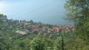 Panorama Olcio