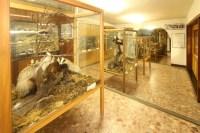 Esino - Museo delle Grigne