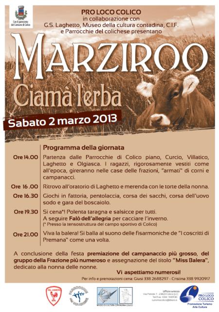 locandina marziroo 2013