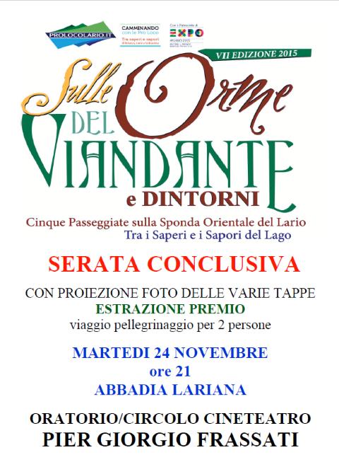 viandante2015 fine